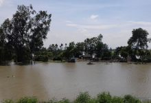 Photo of টাঙ্গাইলে সব নদীর পানি বৃদ্ধি, অর্ধশত গ্রাম প্লাবিত