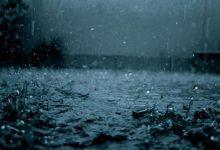 রোববার ৫ বিভাগে বজ্রসহ বৃষ্টিপাত হওয়ার সম্ভাবনা রয়েছে